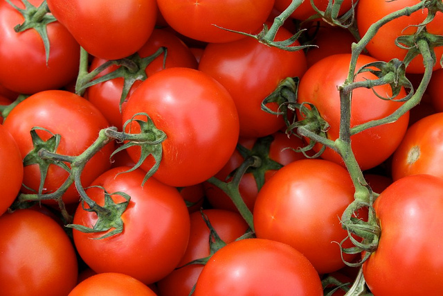 Tomatoes are just an example of foods that can cause itching for eczema sufferers