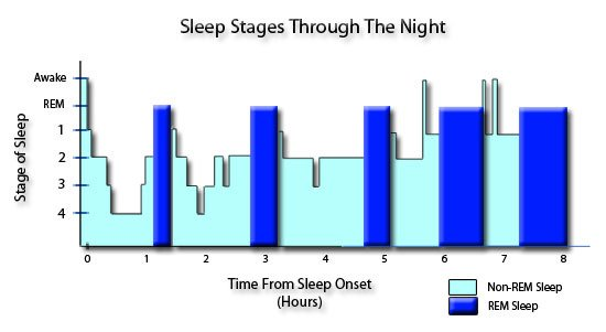 Source : www.end-your-sleep-deprivation.com